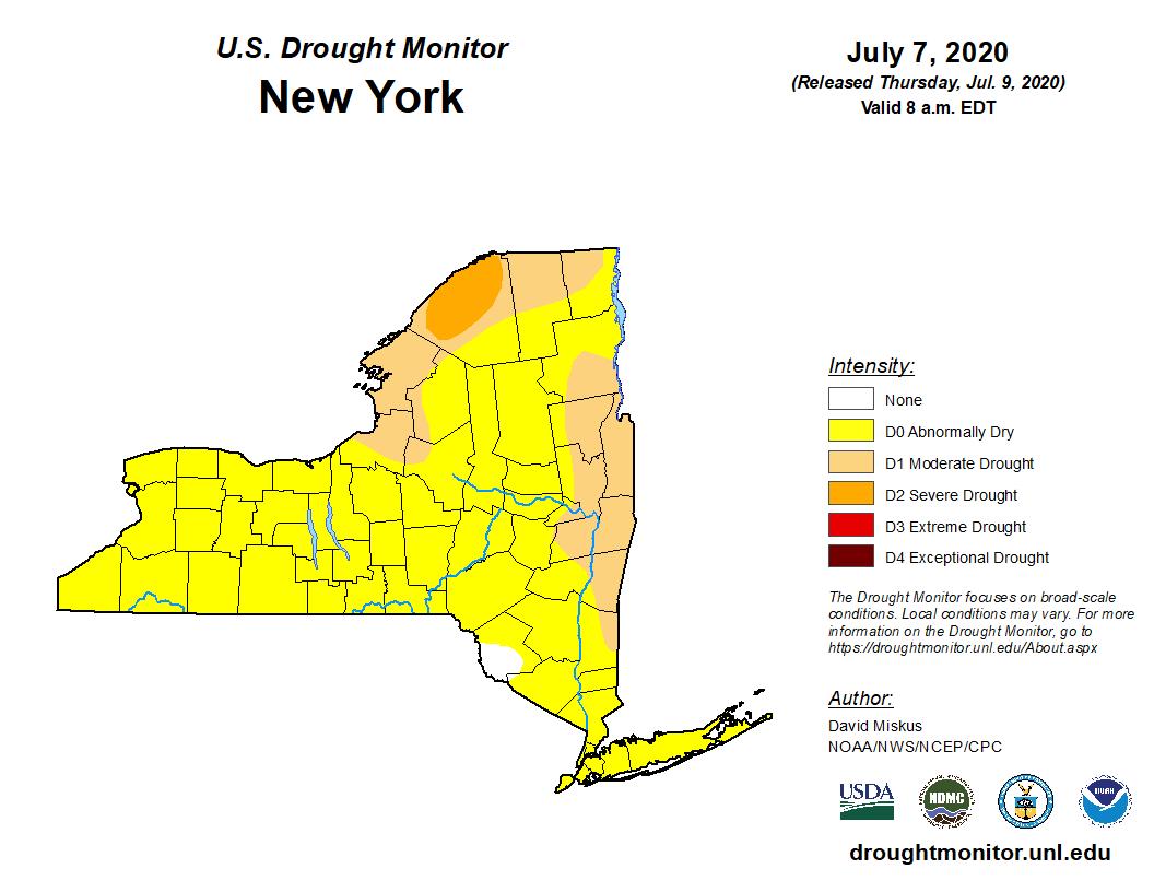NY Drought Map